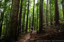 Cascadia Dirt Cup Round 4: Tiger Mountain Enduro (Washington)