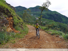 Discovering the Jungle Trails of Sri Lanka