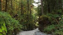 Video: Antoine Bizet Front Flips Over a River