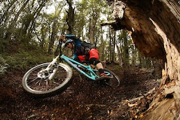 Video: Rawreel - A Loose 2015 with Josh Lewis and Friends