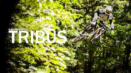 10 Years With East Coast Legend Lars Tribus - Video