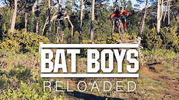 Bat Boys Hunting Trails on Madeira - Video