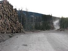 Kananaskis logging threatens bike trails!