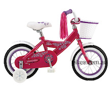 Teach bike riding without training wheels.