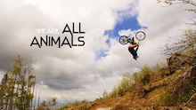 Video: We Are All Animals