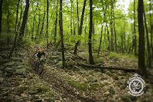 Trans-Sylvania Mountain Bike Epic: Day 4 - Galbraith Enduro