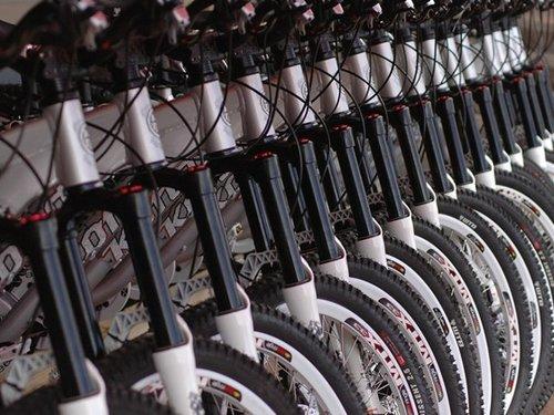 The rental bikes.